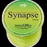 synapse citron 031